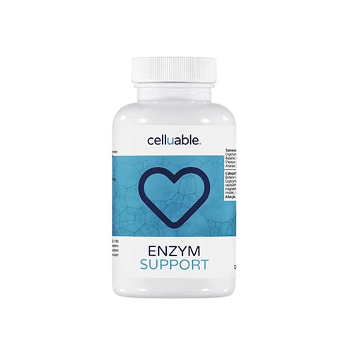 Enzym support